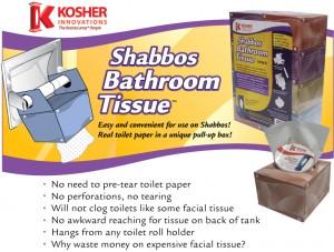 shabbos-toilet-300x227
